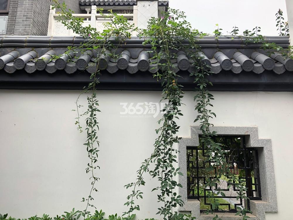 中国院子万振紫蓬湾实景图