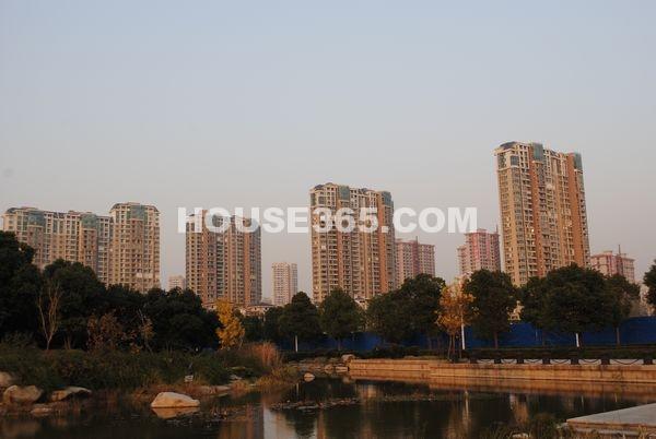 蠡湖一号1期高层实景图(2012.11.13)