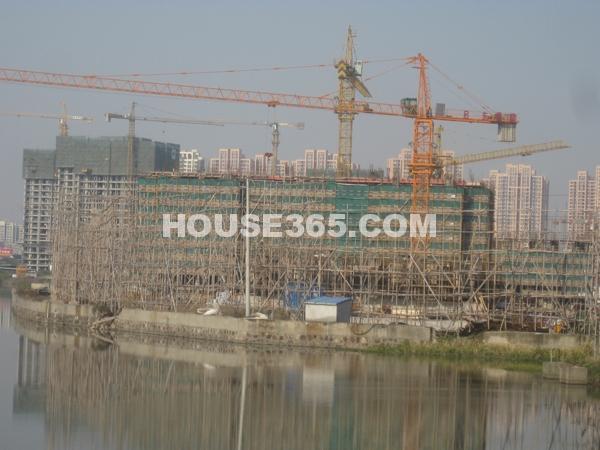 工程进度(2012.11)