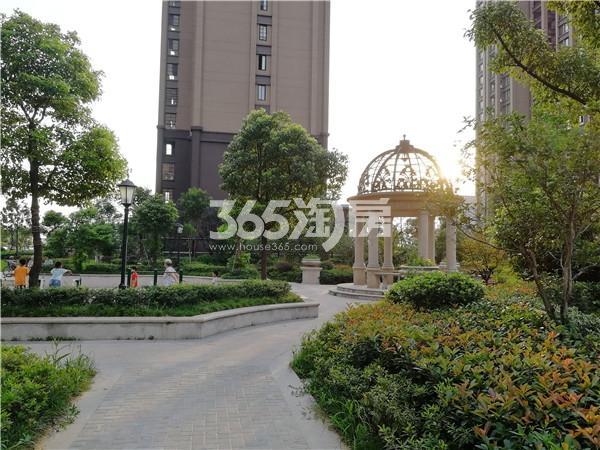 蚌埠国购广场 小区内景 201808