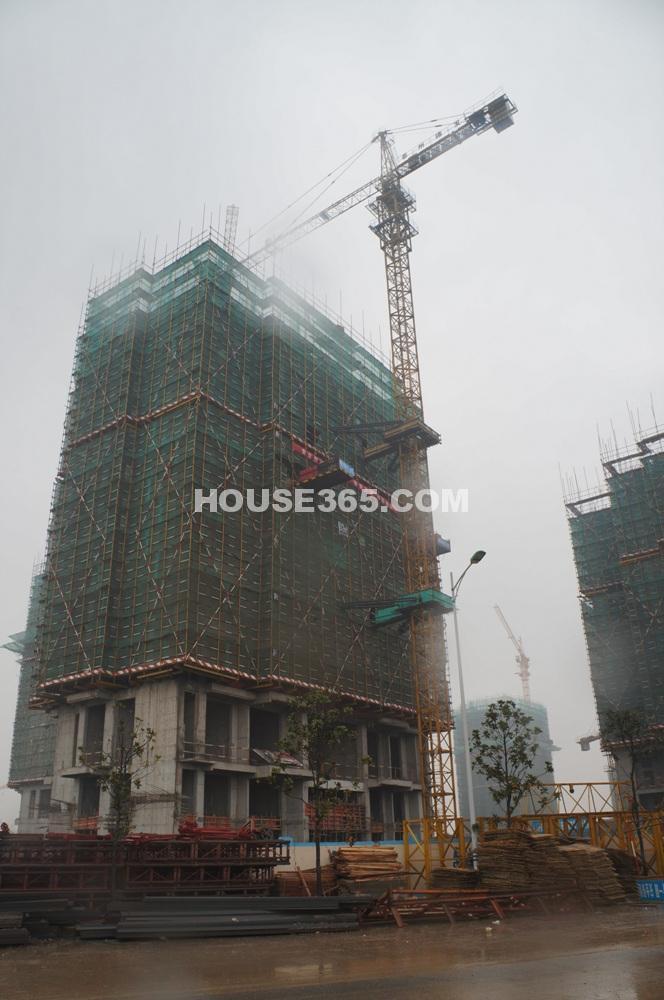雅居乐滨江花园在建楼栋已建至10层以上(1.11)