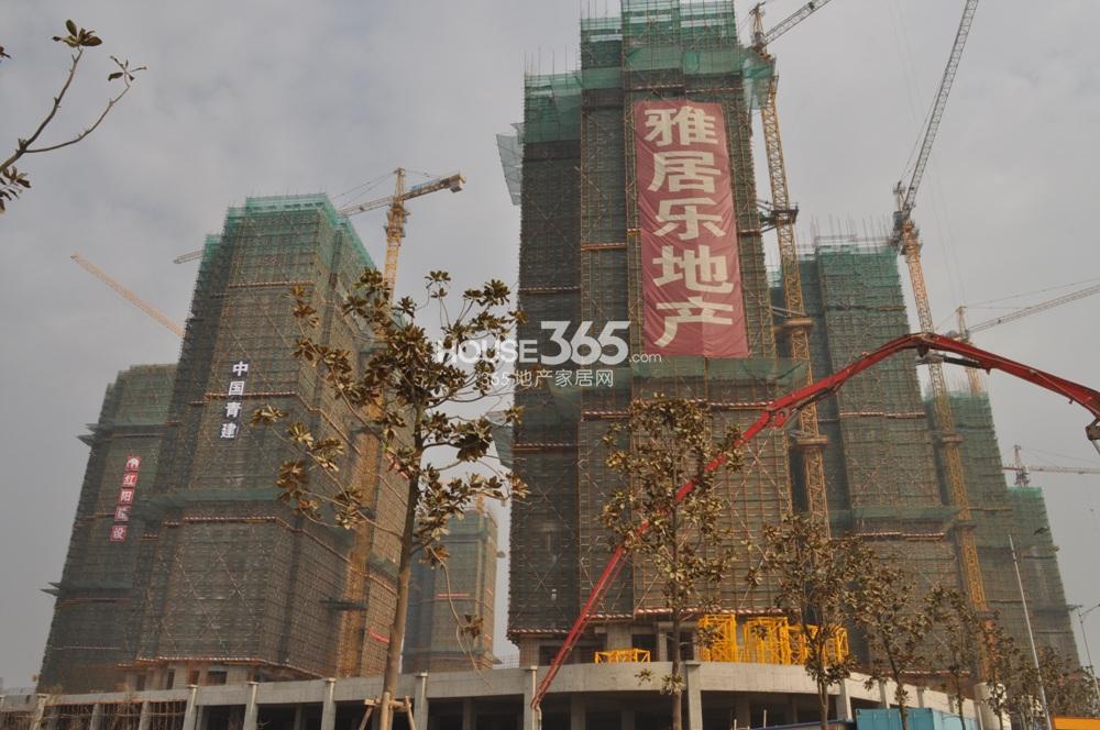 雅居乐滨江花园在建楼栋实景图(2.28)