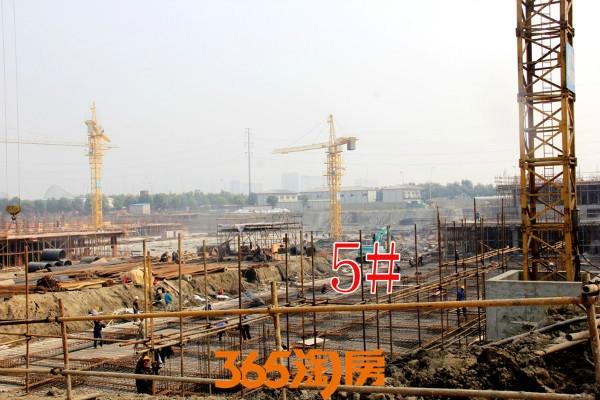 金晖罗兰小镇5#施工中(2017.10摄)