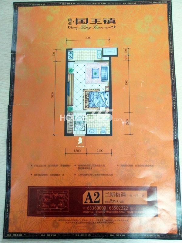 腾业国王镇一室A2两厅一厨一卫39.07㎡