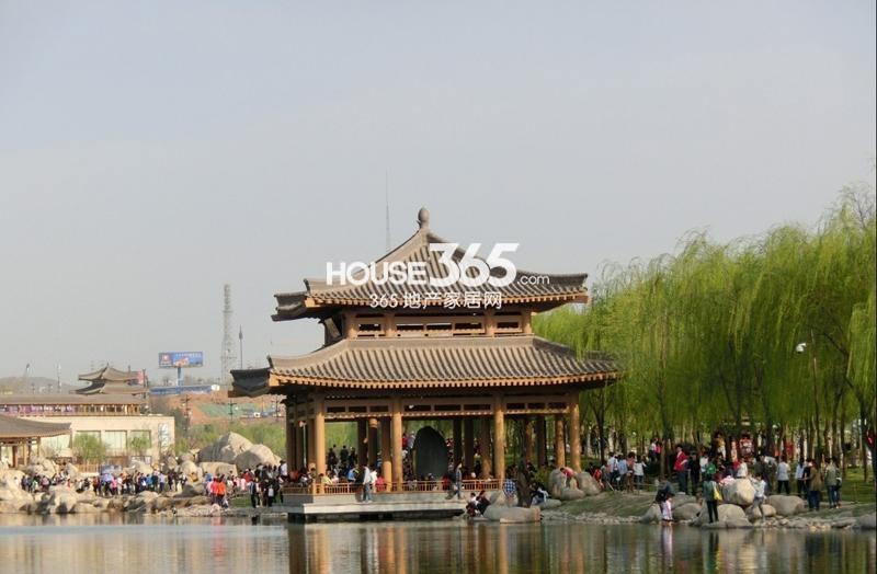 中海紫御华府中海派周边曲江池遗址公园(2013-04-17)