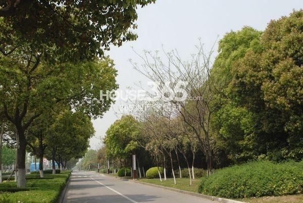 蠡湖一号实景图(2013.4)