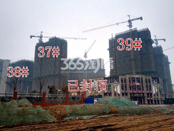 绿地工润和平壹号四期37#、38#、39#工地实景图(1.16)
