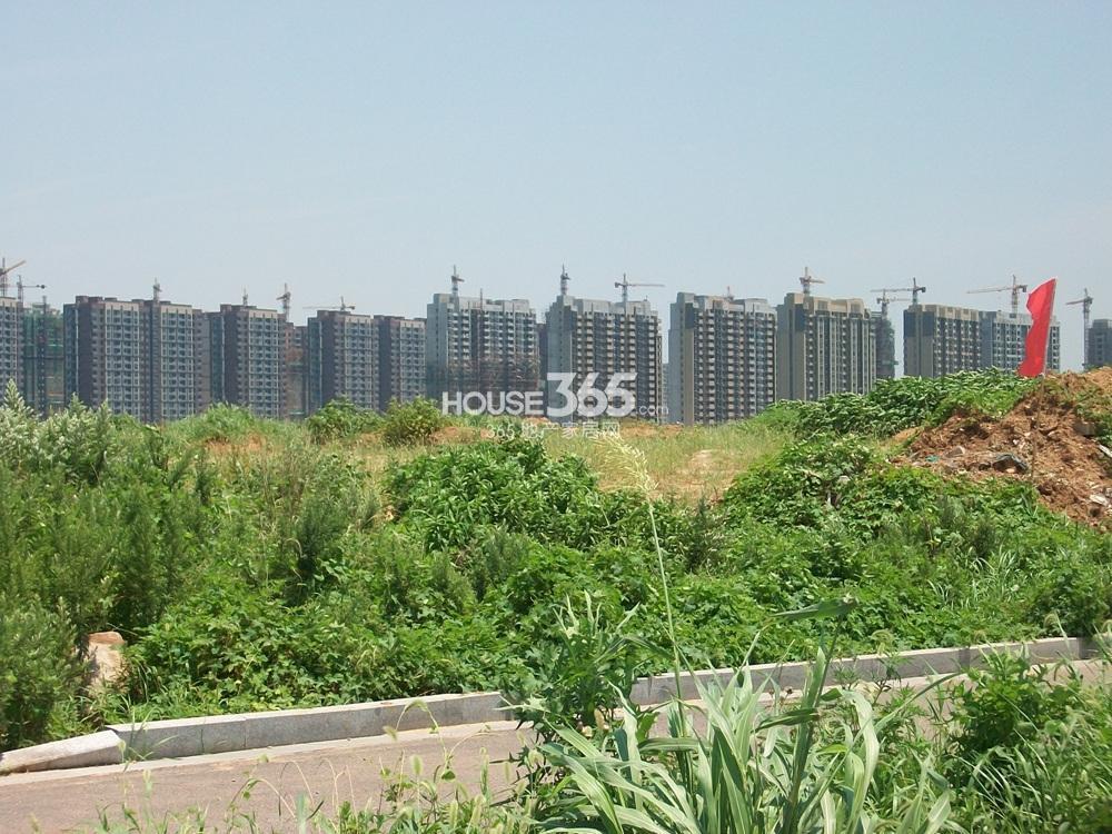 高科荣境东北方向500米左右万科金色领域谷实景图(7.10)