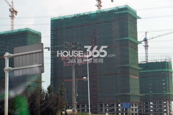 翠屏九溪诚园11、13、14号楼在建(8.15)