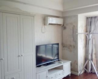 万达广场单身公寓1室1厅1卫49平米整租精装