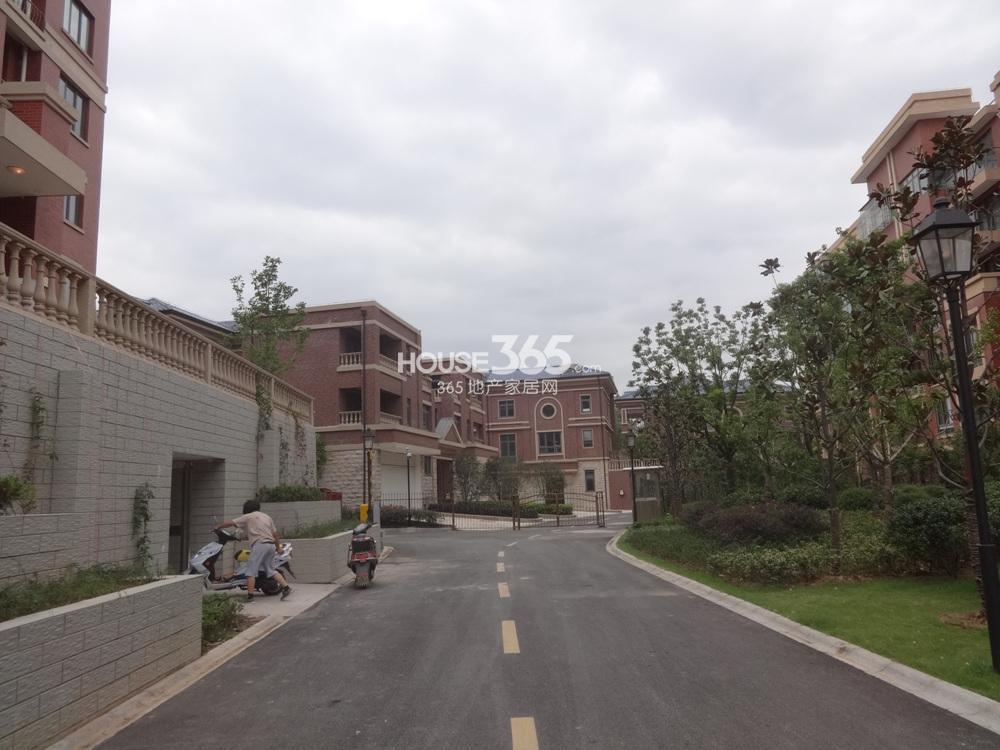 中豪天禄别墅区南入口实景图(10.25)