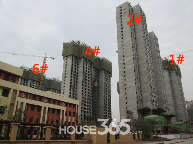 华远海蓝城1/2/4/6#楼施工进度图(20130830)