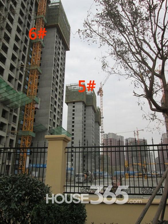 华远海蓝城5/6#楼施工进度图(20130830)