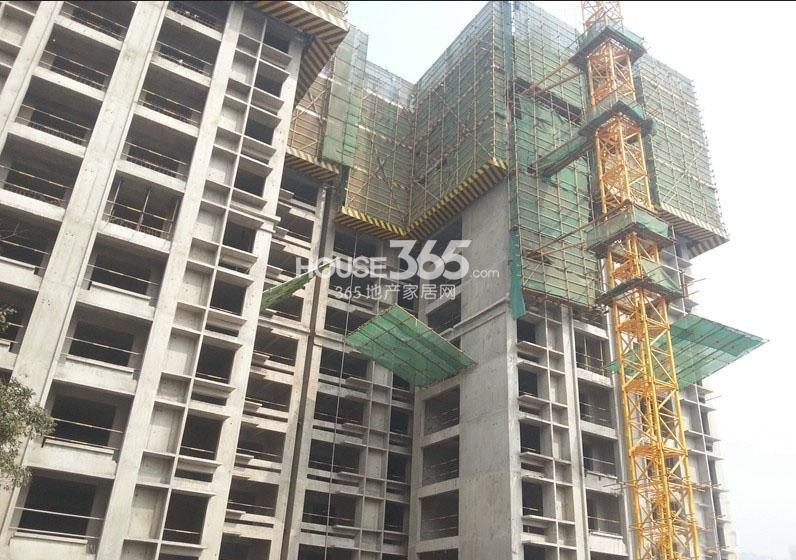 新福兴面孔公社10#楼工程进度图(2013.10)