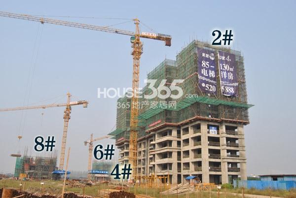 华强城美加印象北区2#、4#、6#、8#(拍摄于2013.10.22)