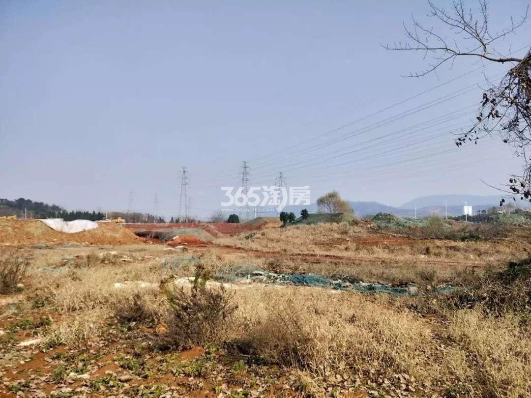 金茂青龙山新城G66地块实景图