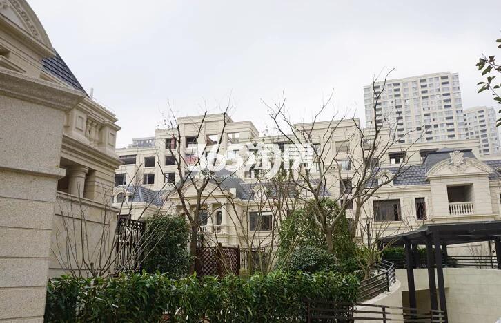 绿地西水东中央生活区洋房实景图(2017.2 摄)