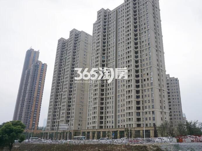 绿地西水东中央生活区高层实景图(2017.2 摄)