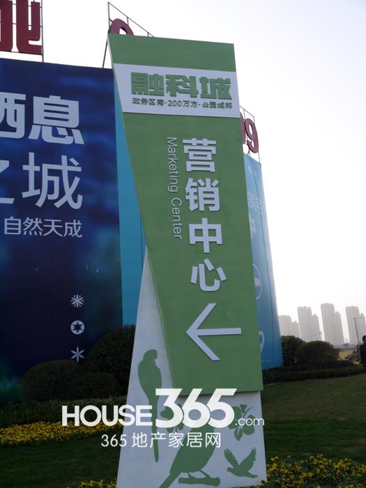 融科城售楼部实景(2012.11.15)