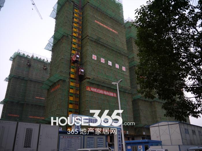 融科城工程进度(2012.11.15)