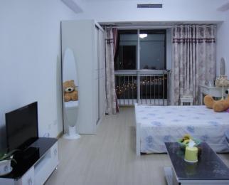 天时非常空间1室1厅1卫50�O整租豪华装