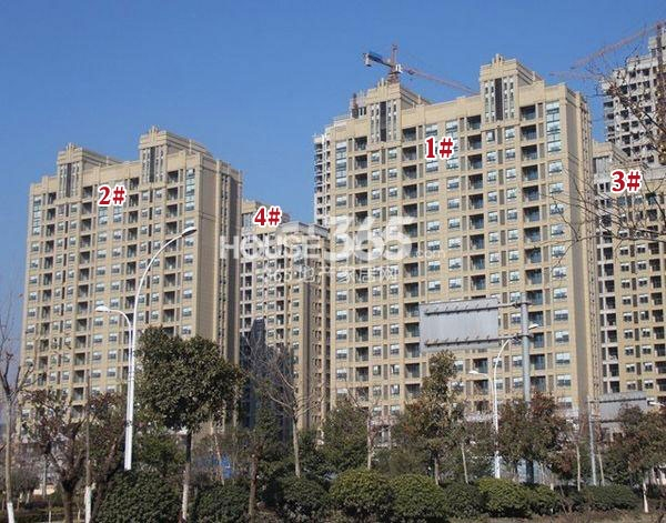 苏宁悦城1-4#楼工程实景图(2014.1 摄)