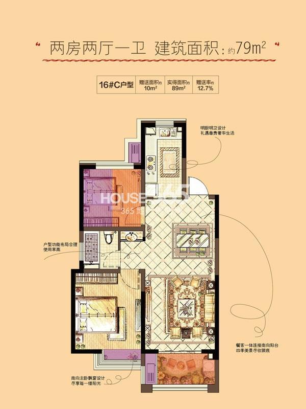 金地格林郡16#C户型图 两房两厅一卫79平米