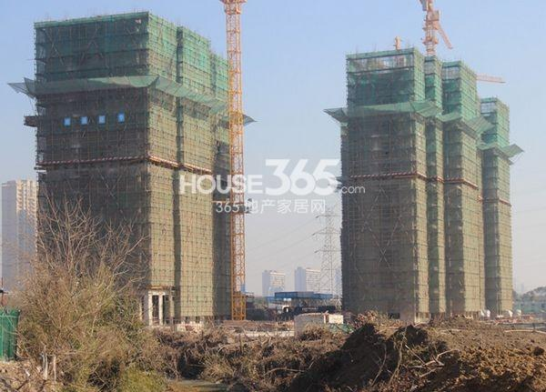朗诗太湖绿郡工程实景图 左起9、6#楼(2014.1 摄)