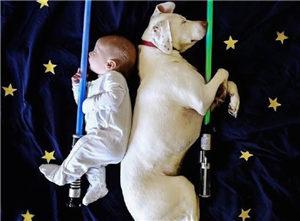 酣睡宝宝和汪星人甜美瞬间