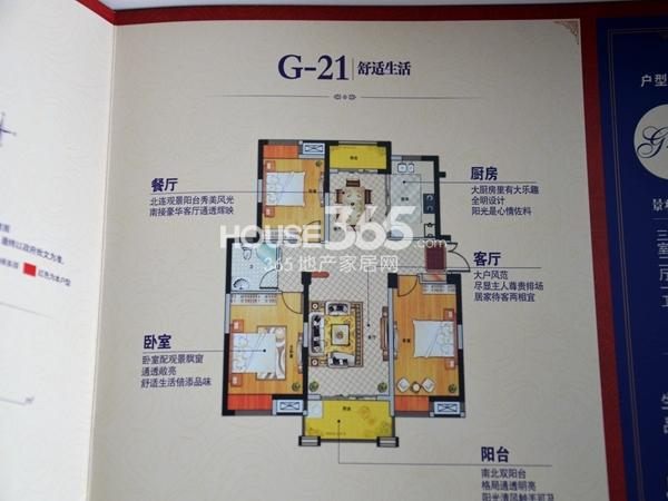鹏欣领誉户型图G21