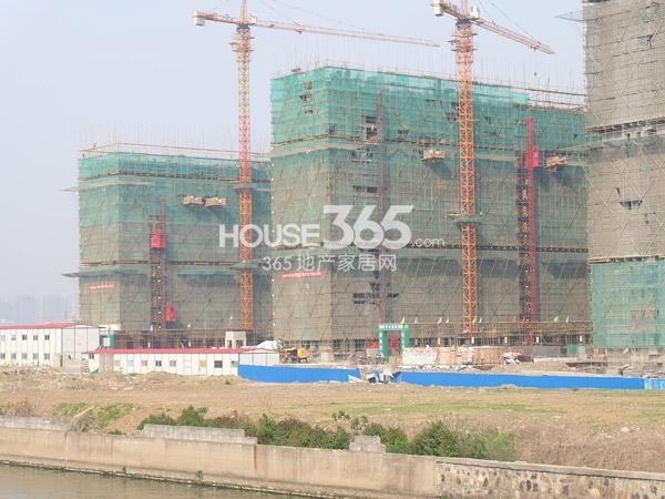 中海凤凰熙岸工程进度实景图(2014.4.9)