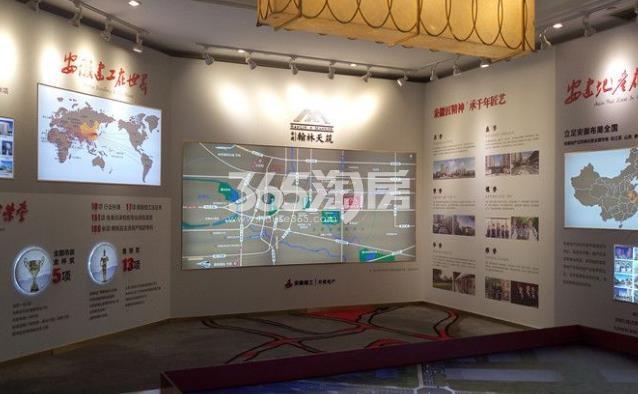 安建翰林天筑项目展示区实景图(2017.12.07)