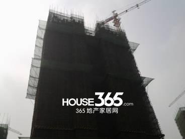 万科森林公园C2-8#楼4月工程进度(2014.04)