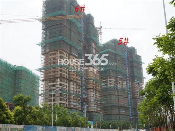 世茂香槟湖5#、6#楼工程进度实景图(2014.5.13)