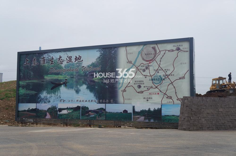 翠屏诚园临近的上秦淮湿地公园(5.21)