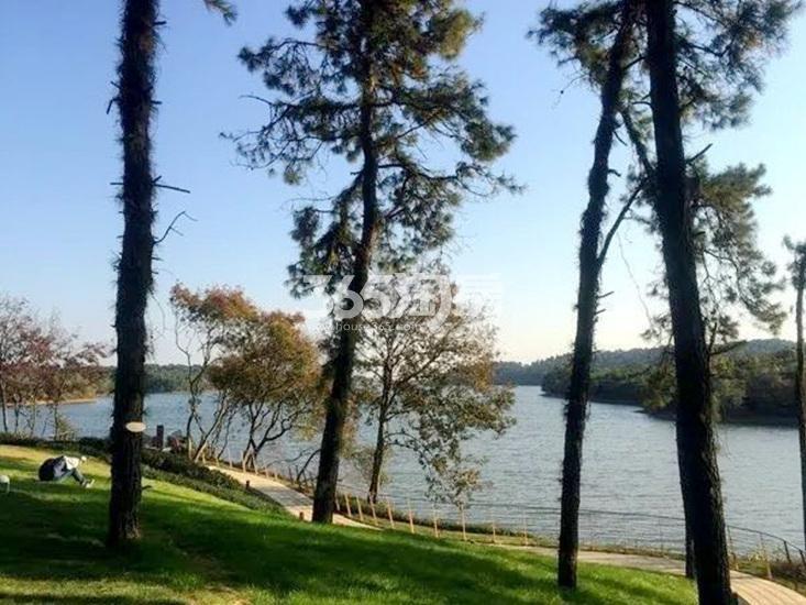 雅居乐山湖城实景图