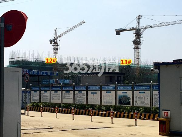 新力帝泊湾12#、13#楼工程进度实景(2018.4摄)