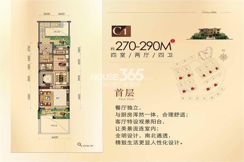源山墅别墅C1户型首层270-290平户型图