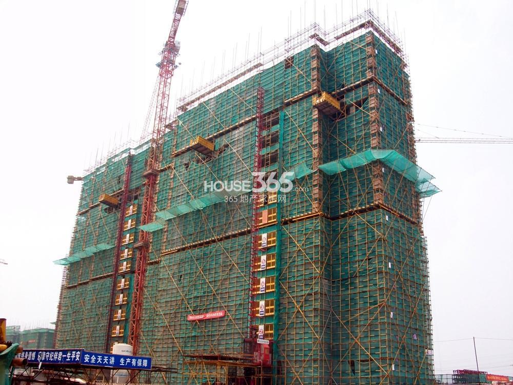 银亿东城11街区1号楼实景图(8.5)