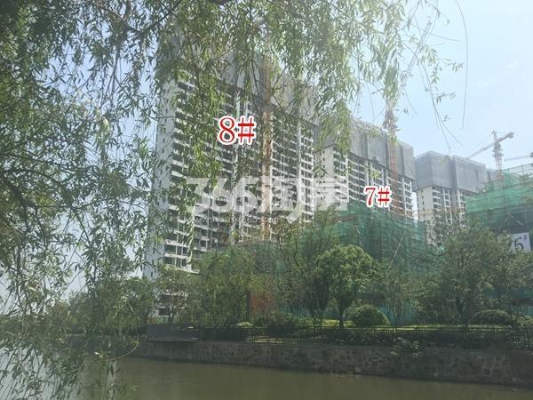 蓝光雍锦园高层7#、8#楼实景图(2018.6 摄)