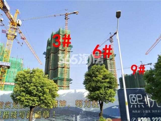 珍宝岛熙悦府3、6、9#楼实景图(9.25)