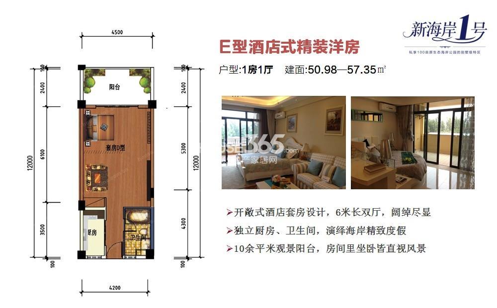 新海岸1号E型酒店式公寓50.98-57.35㎡
