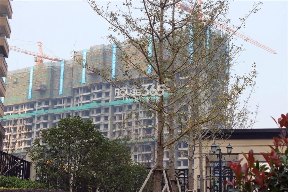 世茂外滩新城二期在建楼栋(11.10)