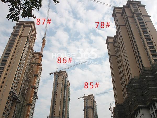 大名城85、86、87、78#工程进度(2014.11)