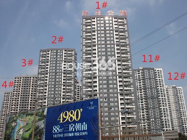 绿洲白马公馆1-4#、11-12#工程进度(2014.11)