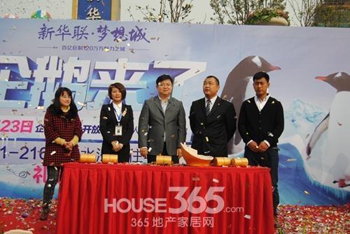 11月23日新华联梦想城参观企鹅