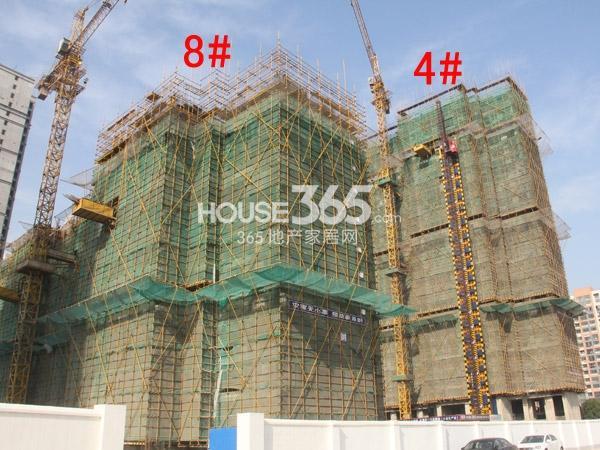 弘阳广场4#、8#楼工程进度图(2014.12)