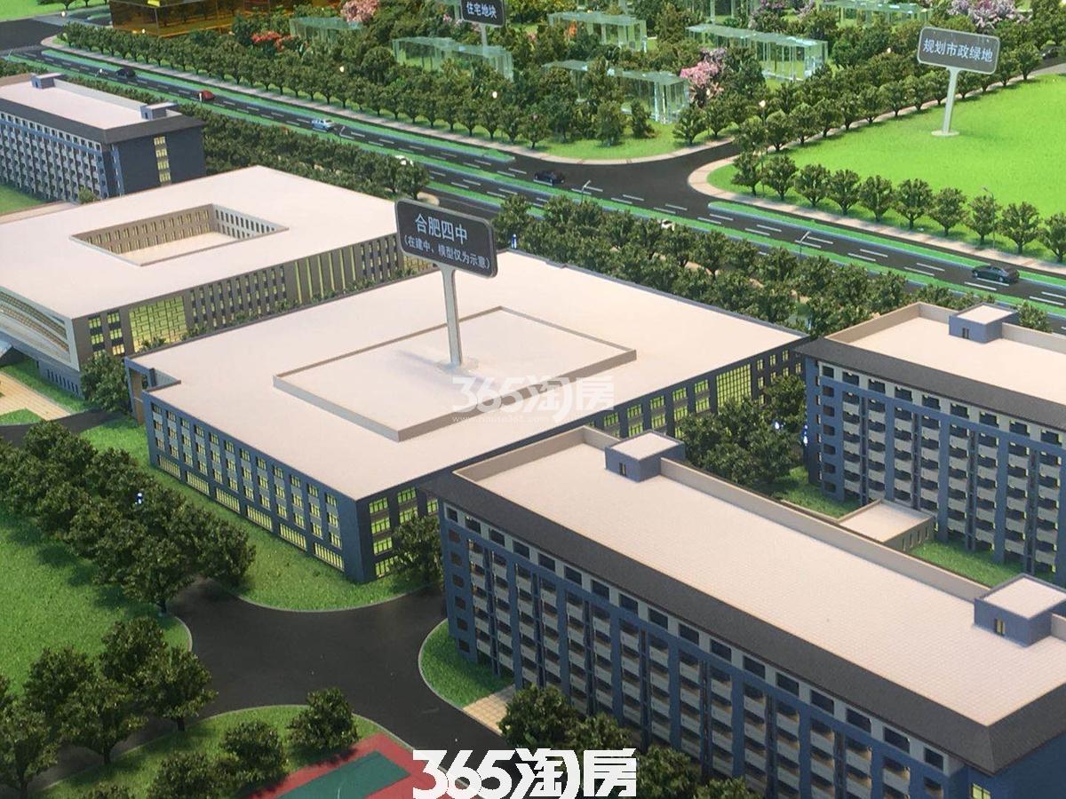 紫云赋项目周边合肥四中沙盘实景图(2018.5.3)