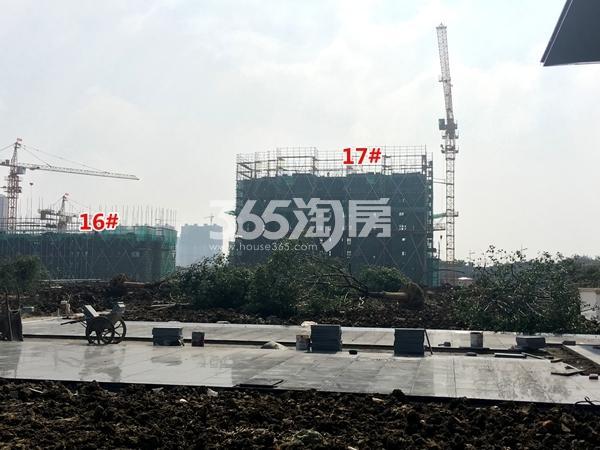 中锐星公元16#、17#楼工程进度实景图(2017.10摄)