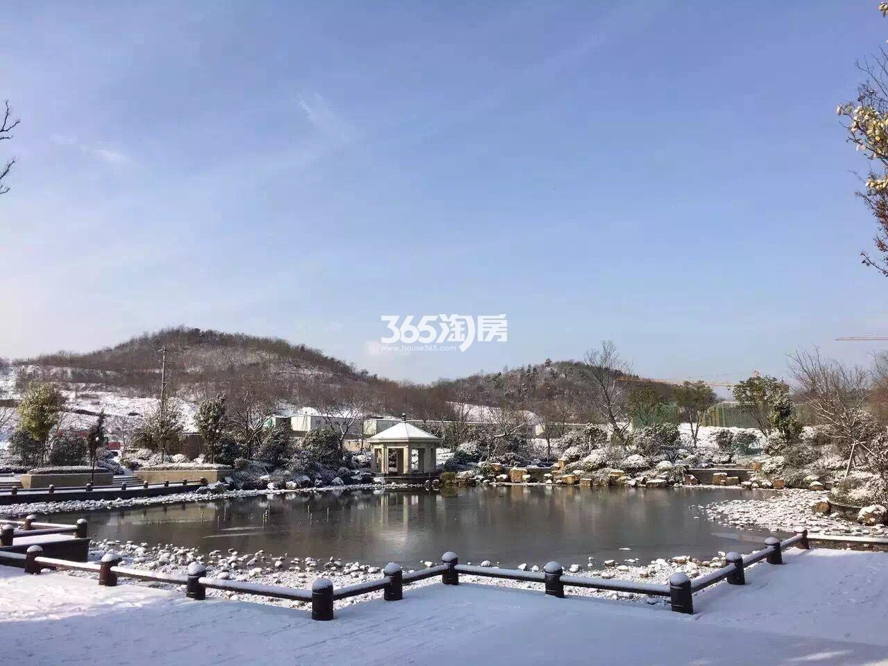 银亿东城售楼处雪景实景图(1.23)